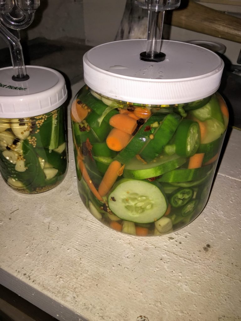 Probiotic fermentation of vegetables